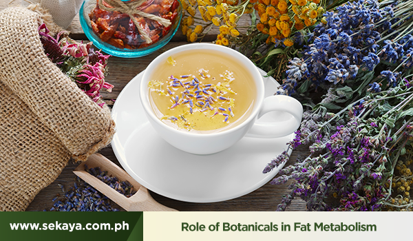 Boosting Metabolism with Botanicals