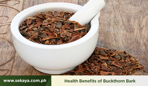 Buckthorn Bark and its Natural Cleansing Benefits