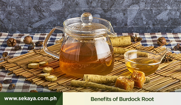 The Benefits of Burdock Root