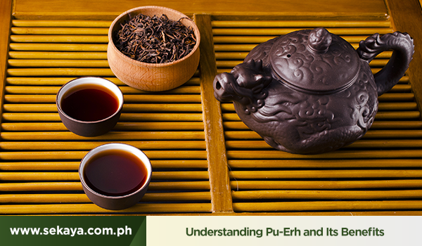 Understanding Pu-Erh and Its Benefits